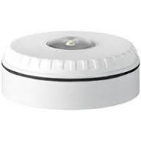 SOL-LX-C-WW  White Conventional Ceiling Strobe