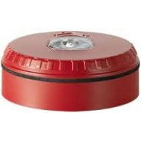 SOL-LX-W-RW  Red/White Conventional Wall Strobe
